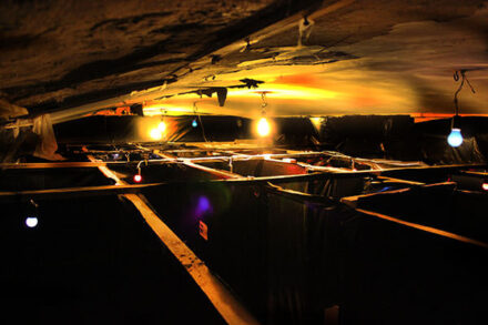 1. ábra a szabadulószoba Labirintus Budapest